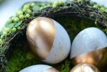 Simply Easter / Sharing great ideas for Easter decor, DIYs, family activities, party planning tips, table decorations, Simply Potatoes recipes, and more!