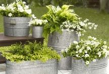 Porch Container Garden Ideas / Finds lots of ideas for beautiful container gardens for your porch - from hanging baskets to interesting containers for your steps, you'll find it here! #containergardening #frontporchlandscaping