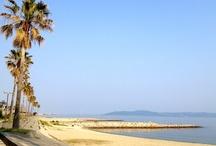 eigashima.com