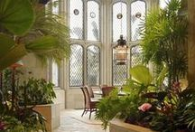 Homes - Conservatories & Sun-filled spaces