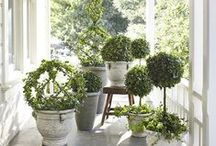 Garden Planters & Containers