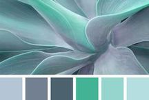 BRAND: Colour Combinations