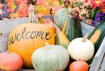 Fall / by Kellie Davis