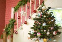 Christmas trees / by Kellie Davis