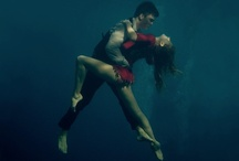 Tango / by Raquel Michael