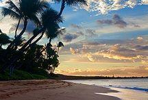 Maui ☀️ / by Andi Smith