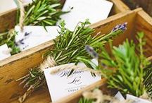 Escort Cards / by Green Ribbon Parties