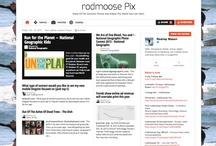 rodmoose Pix / Many Of The Greatest Photos, Illustration And Videos The World Has Ever Seen.