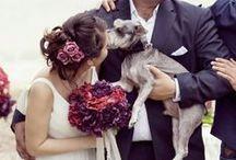 #babehswedding / by Michelle Khoo