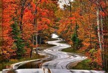 Happy Fall Y'all <3 / by Bailey Duxworth