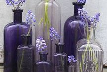 Bottles / by Cindy Bugg