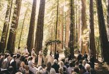 Wedding Receptions and Venues / Our favorite shots from weddings we photographed and also those we admire. Including rustic barn weddings, glamorous destinations, big city receptions and romantic beachside ceremonies.