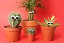 Cactus / by Wendy Pahl Giebler