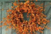 Fall Decor / Some of Native Trails' favorite fall decor ideas, collected from around the web.