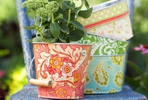 Green Thumb  / Aspirational gardening from a first timer.  / by Heather Gjerde