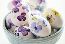 Easter and Spring Celebrations