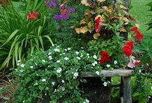 GARDEN AND YARD IDEAS / Fantastic and doable ideas for our yard and garden. We need lots of inspiration! / by Linda Hibner
