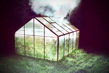 420 / by Maribeth McCue