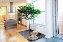 A Tree Grows In Jacobson('s home) / Way cooler than any tree growing in Brooklyn. / by Amanda J