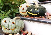 Fall Favorites / by Lindsay Willis