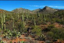 """Arizona Trail"" in and around the Park"