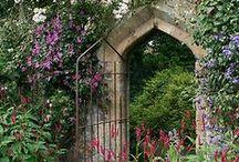 Homes n GARDENS n Flowers 2 / by Michal Bennett