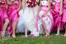 Weddings - bridesmaids dresses