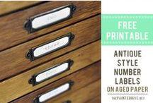Printables / by Cindy Thomas