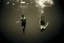 Underwater Photography / by Jordan Shone
