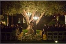 """When We Say I Do / With a breathtaking mountain backdrop and gorgeous Italian fountains and gardens Miramonte is the """"most romantic resort in the desert"""" and a perfect location for weddings. Check out some of our local delights"""