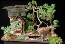 bonsai / by Joyce Burleson