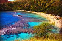 Oahu Vacation / by Denise Fouts
