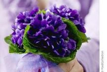 Feb.'s Sweet Violets and Beautiful Amethyst / Happy Birthday to me...  / by Sharon Anderson