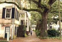 Dream Home / Ideas and inspiration for my future and current home / by Lauren Greene