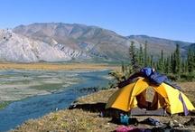 Camping / by Kate Parham