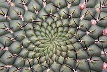 Inspiring patterns & textures