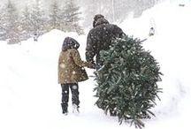 christmas | c'est noël