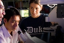 Duke Research / by Duke University