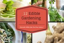 Garden ~ Growing Tips / Tips and good info for growing awesome gardens.