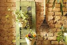 Repurpose, Recycle, Upcycle / Make something old new again. Reuse it for another purpose. / by Organic Gardens Network™
