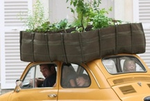 Garden ~ Mobile / Mobile Gardening - on the move