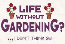 Garden ~ Signs & Gnomes / Garden Signs & Gnomes