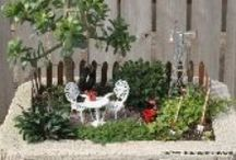 Garden ~ Miniature / Miniature Gardens