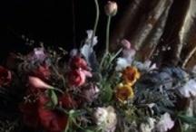 floral arrangements / by wildgingersnap