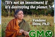 Garden ~ GMOs / Info on GMOs