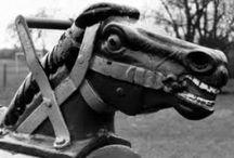 Fake horses / by Suze Stephenson