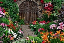 Beautiful Gardens / by Darlene Myers