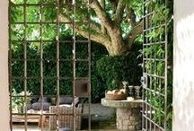 Vineyard inspirations / Ideas that may find a place in our vineyard