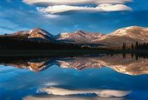 Reflections / by Darlene Myers