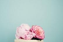 party { pink & aqua }